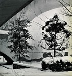 Caspary Dome by The Rockefeller University