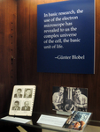 Günter Blobel: At the Rockefeller by The Rockefeller University
