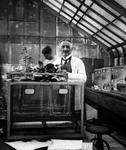 JACQUES LOEB IN HIS LABORATORY