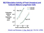 Activity of Langerhans Cells