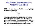 DEC-205 as a Unique Receptor for Adsorptive Endocytosis by The Rockefeller University