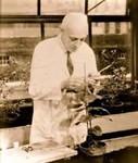Braun, Armin C. by The Rockefeller University