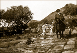 Enroute to the Ming Tombs, China, 1915 by The Rockefeller University