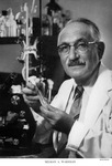 SELMAN WAKSMAN by The Rockefeller University