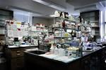 Merrifield Laboratory. View no.12, 2006 by The Rockefeller University