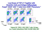 Low Doses of TGF-β1 by Steinman Laboratory