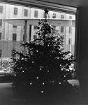 President's House, December 1960 by The Rockefeller University