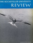 The Rockefeller University Review 1965, vol.3, no. 4