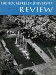 The Rockefeller University Review 1966, vol. 4, no. 3