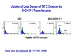 Uptake of Low Doses of TITC-Dextran by SIGN-R1 Transfectants by Steinman Laboratory